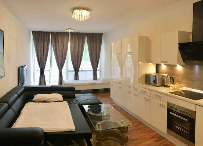 2-Room-Apartment  in the centre of Bonn