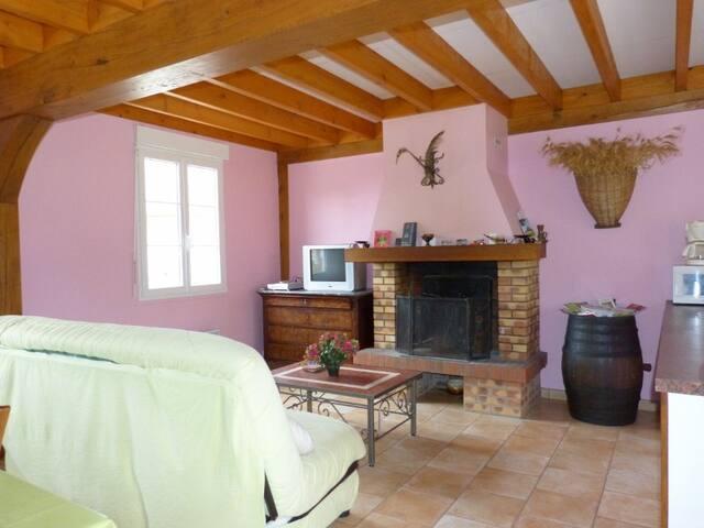 LES BAILLIS Maison de Caractère du PAYS FORT - Villegenon - House