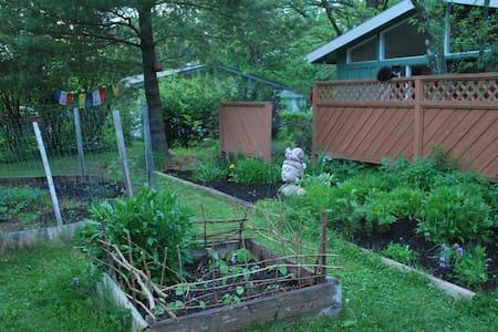 quaint green cottage - Bloomington