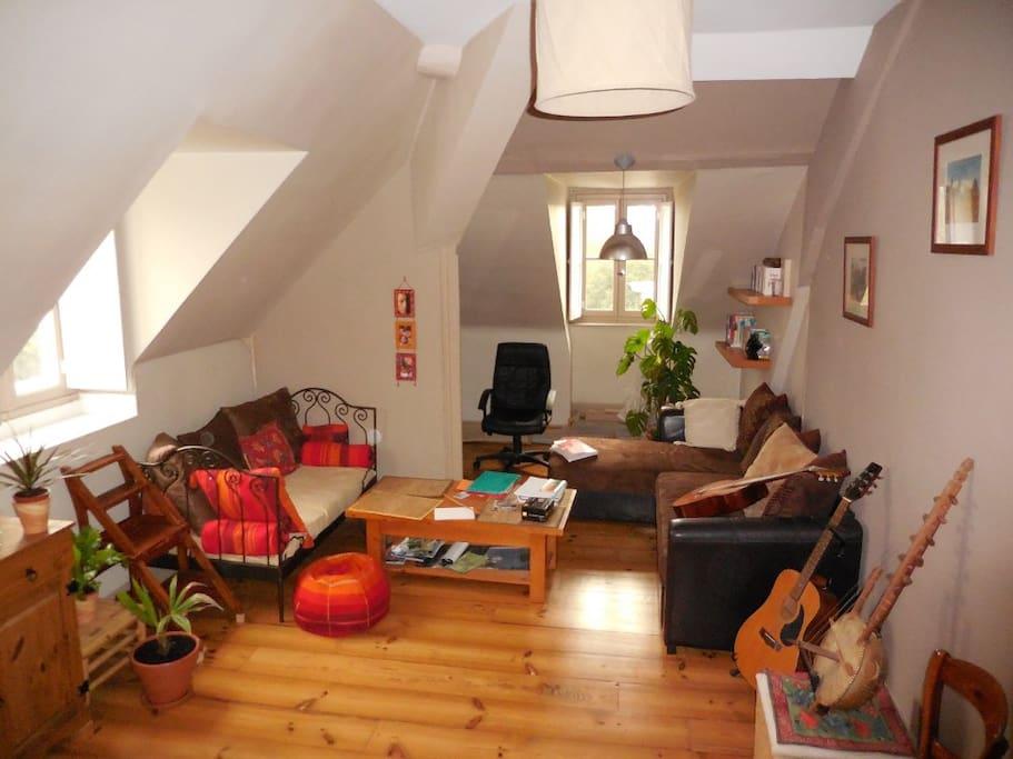 Grand salon lumineux / Bright living room