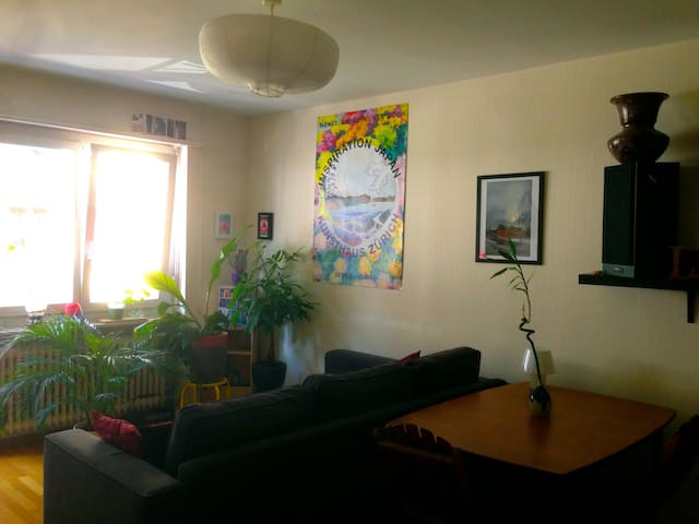 Well located comfortable apartment - Zürich - Apartment