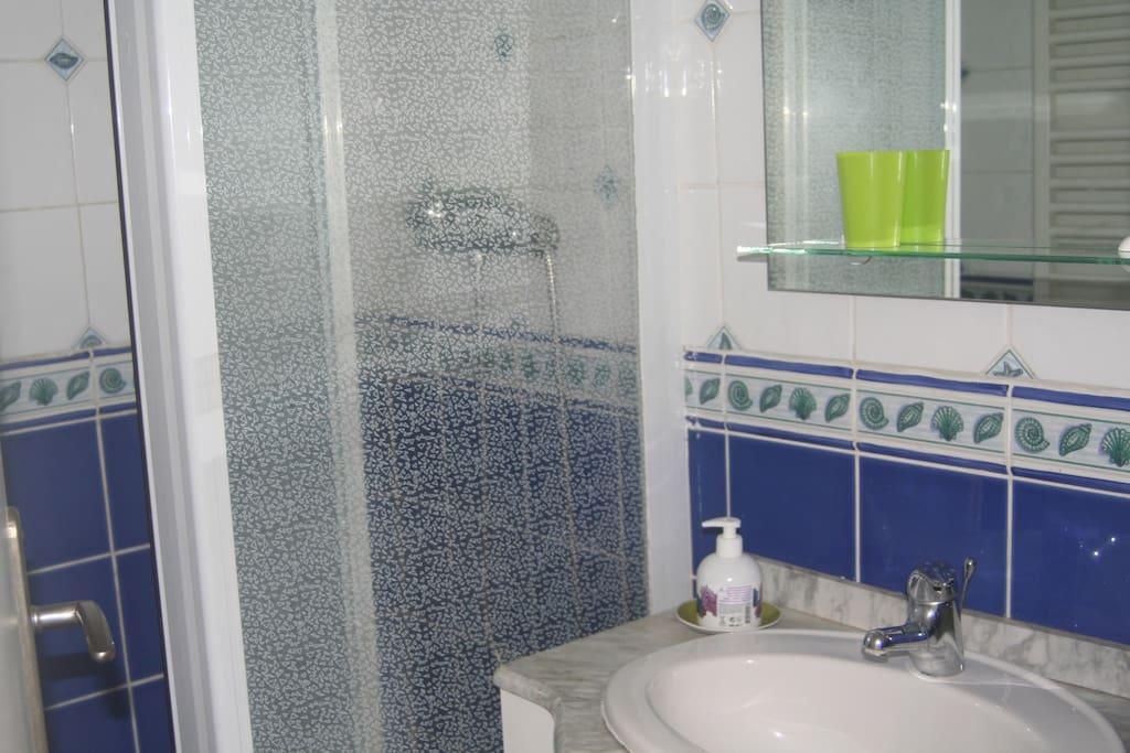 Salle de bain pratiqu