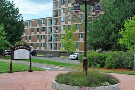 Well Located Spacious 2BR w/ Pool - Minneapolis - Pis