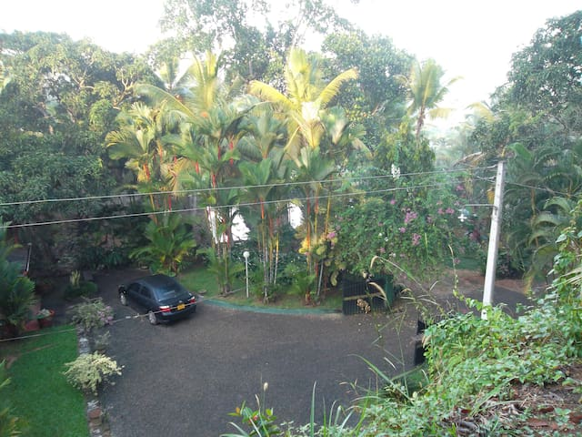 """""""Gaily Greens""""-House for rent - Beruwala - House"""