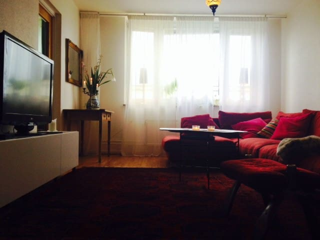 A big and bright place with wiew. - Malmö - Apartment