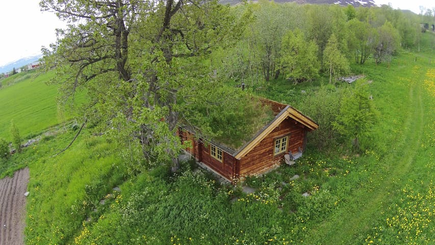 Farm cottage - Oppdal - Kisház
