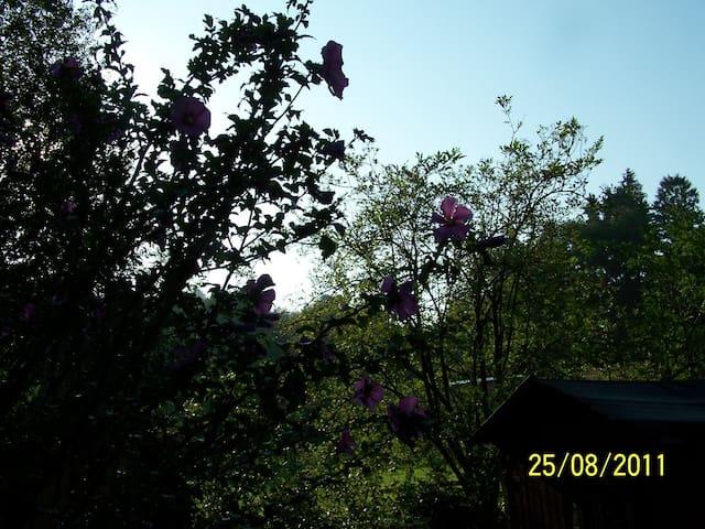 Zimmer zum Sonnenaufgang - Fürstenfeldbruck - Hus