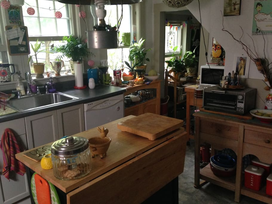 light-filled kitchen with lots of plants and color