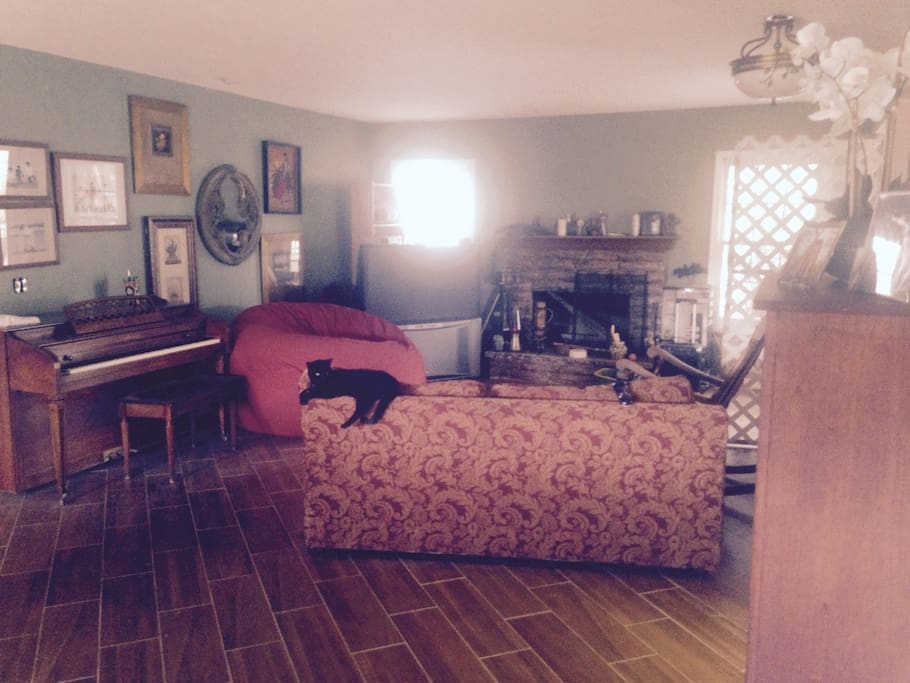 Living Room New floors porcelain tile throughout house- no carpet