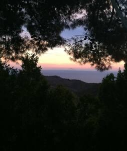 Malibu Mountain Getaway - Малибу - Дом