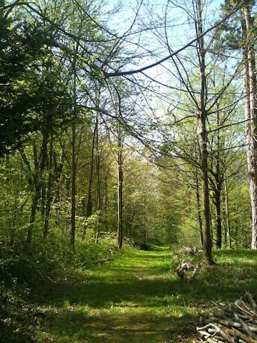 privat woods