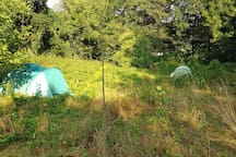ask me: camping ground