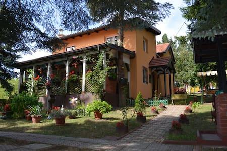 Great holiday house near Sarajevo - Kanton Sarajevo - Casa