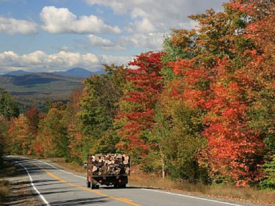 Country road in autumn.