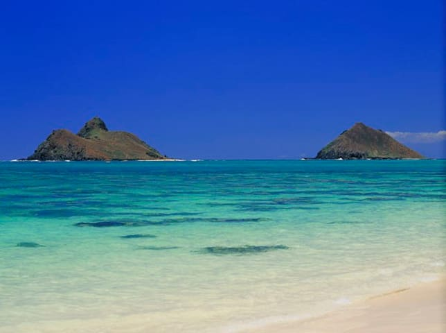 Kailua Blue Ocean Breeze Luxury Oasis/Across Beach