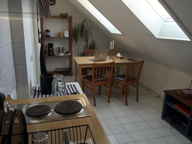 1 Zimmer Wohnung mit großer Küche - München - Apartment