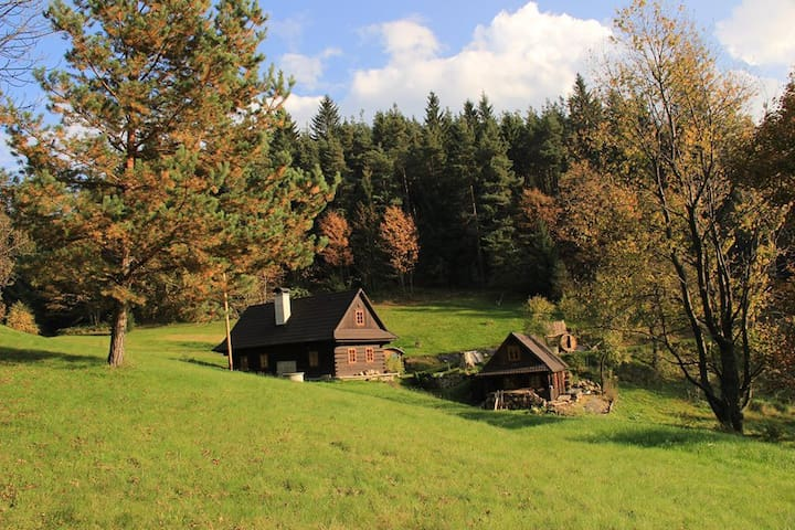 A cottage in quiet, secluded woods - Hutisko-Solanec