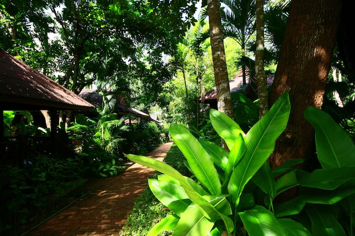 Relax in the greenery surrounding