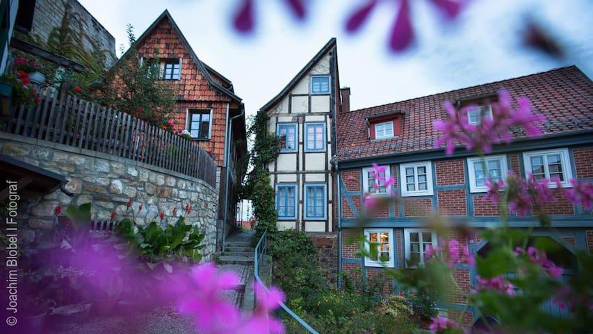 """""""Halbes Haus"""" (Half House) - Quedlinburg - Rumah"""