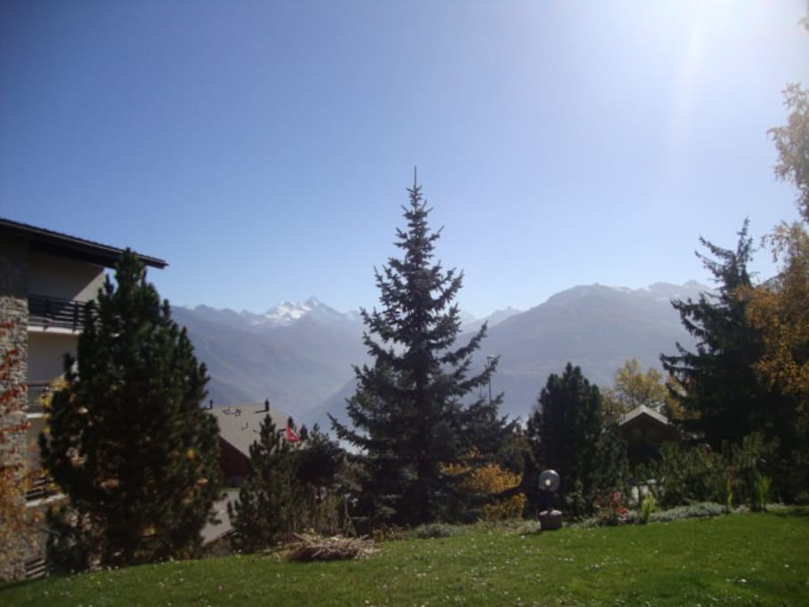 View of the Alps from the garden