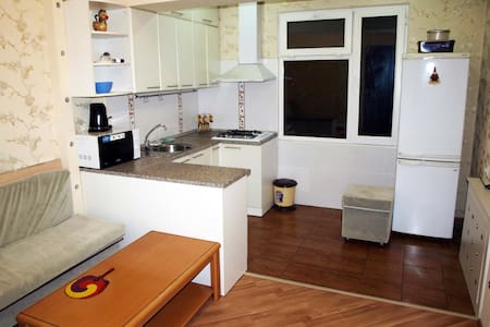Tashkent CBD apartment - Тошкент