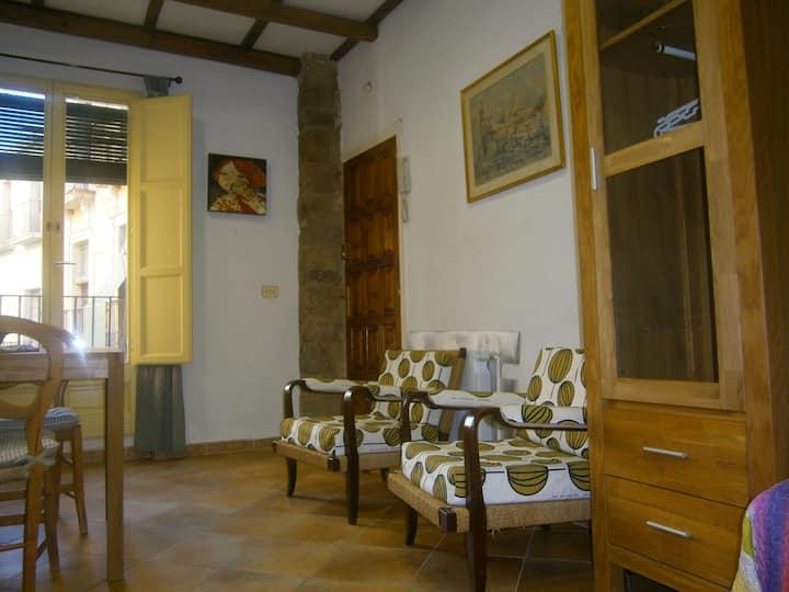 Estudio en el CENTRO HISTORICO de Girona