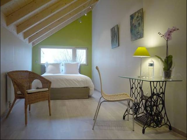 Cosy chambre PIMPRENELLE - Digione - Bed & Breakfast