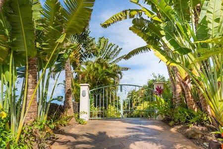 Beachfront on Maui - Haus