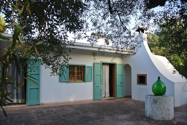 House among olive trees TorreGuaceto WiFi & bikes - カロヴィーニョ