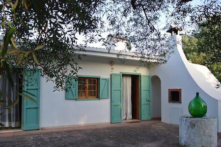 House among olive trees TorreGuaceto WiFi & bikes - Carovigno - Casa
