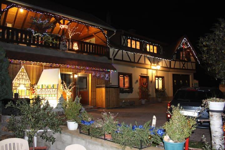 Independent house in the Alsatian vineyard