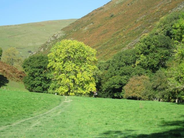 The Stretton hills