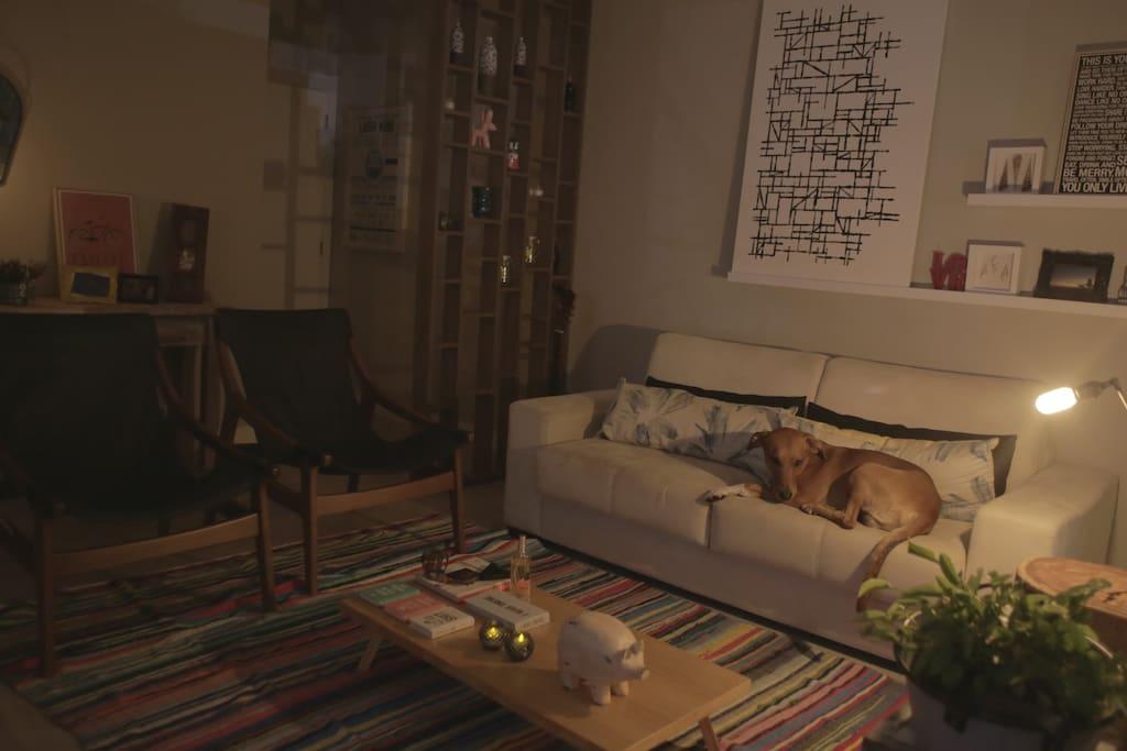 Sala de estar (obs: dog não incluso :)  )