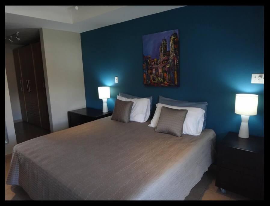 Master Bedroom / Recamara Principal