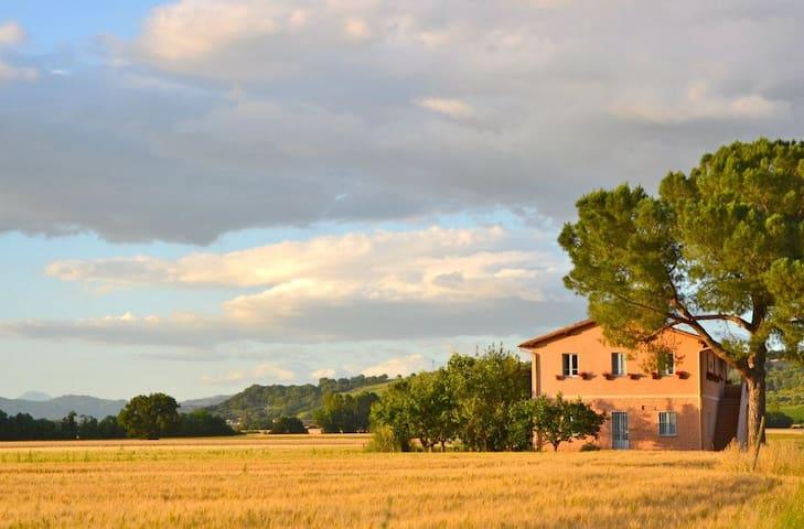 Charming farmhouse in Torgiano - Miralduolo - Apartment