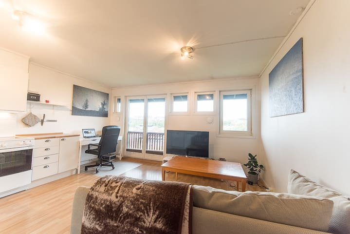 Cosy apt with parking and subway! - Oslo - Apartment