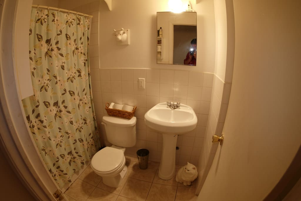 this is the shared bathroom!