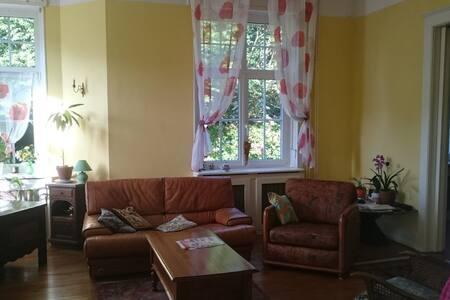 Chambre d'hôtes/ maison de maitre - Troisfontaines - Istana