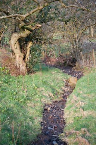 Castle Cottage, Room 1 - Pengenffordd
