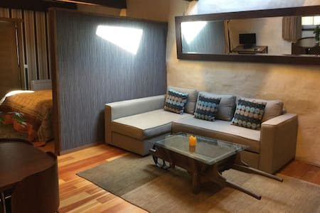 Tierra. Apartamento Rural de Paja - Ordes - Apartment