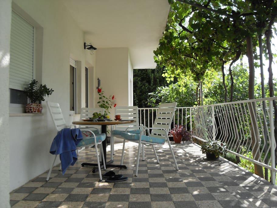 Terrace (20 m2)