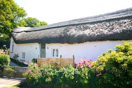 Thatched Devon Barn by the Sea - Croyde - 獨棟