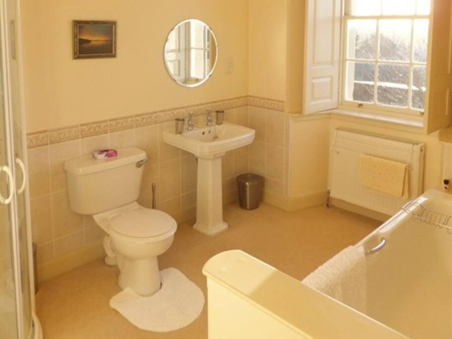 Peach Room ensuite - Shower and bathtub