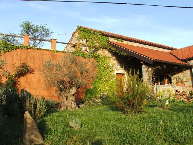 Istria Divina - Koper - Apartment