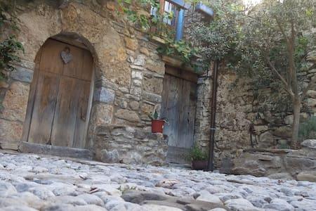 Chaleureuse maison typique village. - Laspuña - Casa