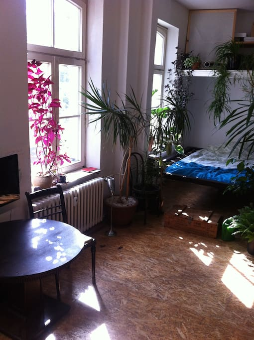 Apartment Loft Artist Studio 45qm Apartments For Rent In Bonn Nordrhein Westfalen Germany