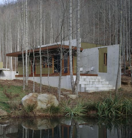 Pond House [modern] - Rabun Gap - Huis