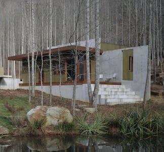 Pond House [modern] - Rabun Gap