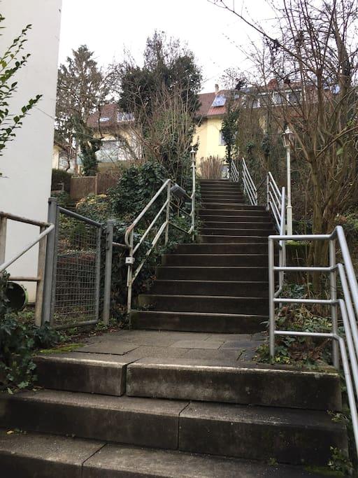 Treppenaufgang zum Haus