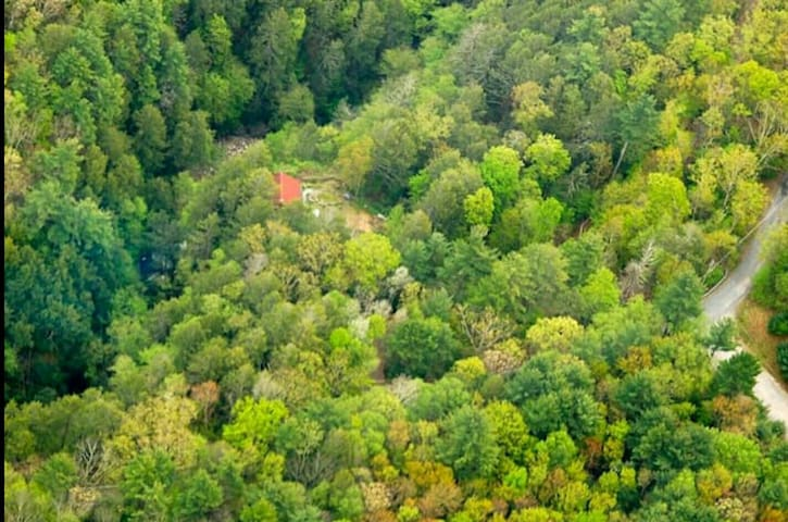 Aerial shot of the cabin in secluded forest.